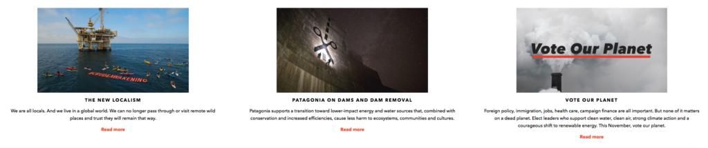alcune campagne attiviste di patagonia
